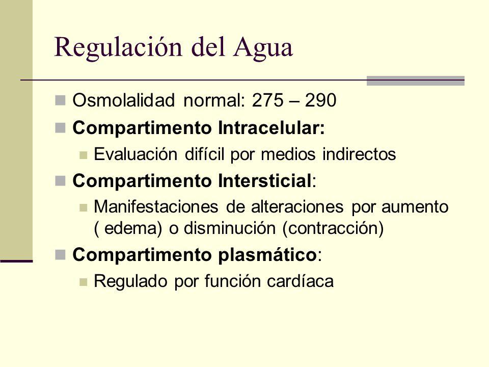 Regulación del Agua Osmolalidad normal: 275 – 290