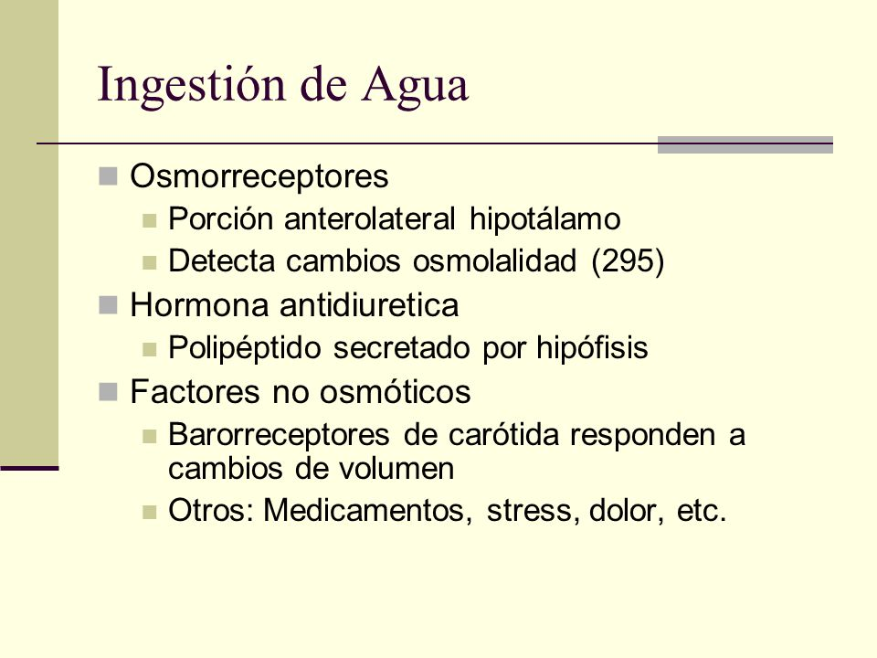 Ingestión de Agua Osmorreceptores Hormona antidiuretica