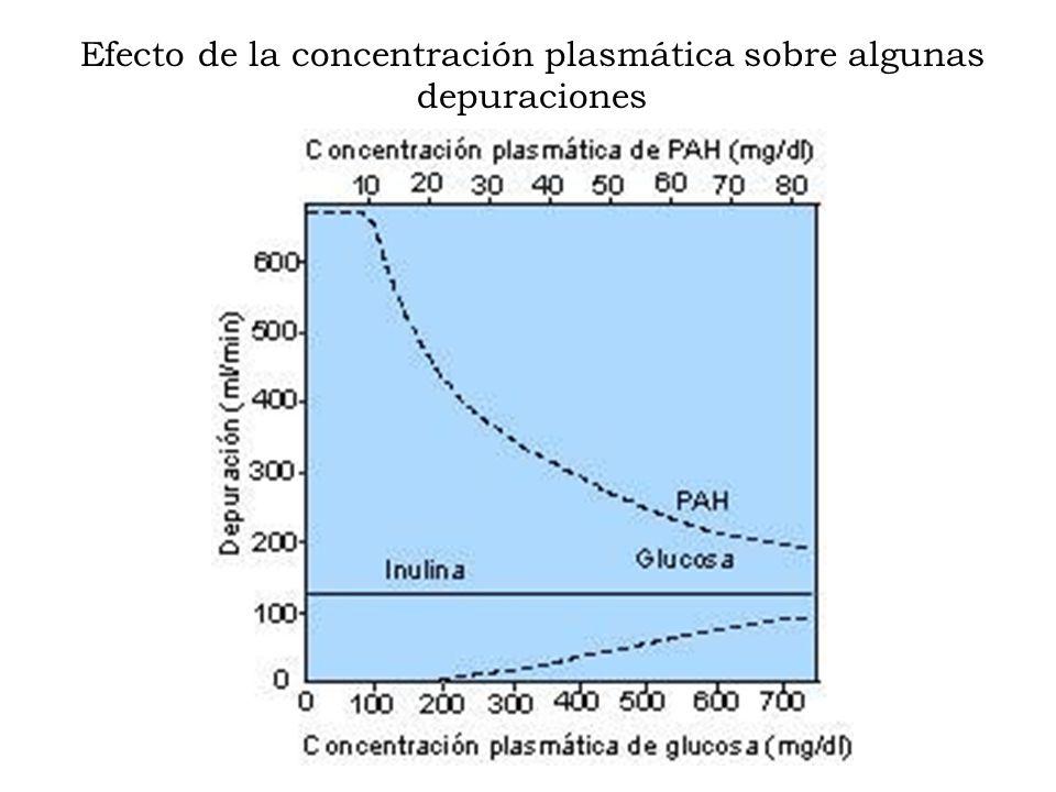 Efecto de la concentración plasmática sobre algunas depuraciones