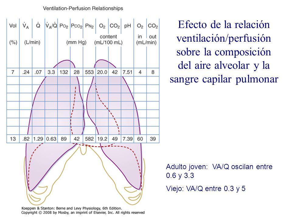 Efecto de la relación ventilación/perfusión sobre la composición del aire alveolar y la sangre capilar pulmonar