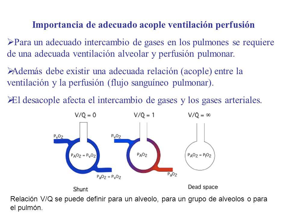 Importancia de adecuado acople ventilación perfusión