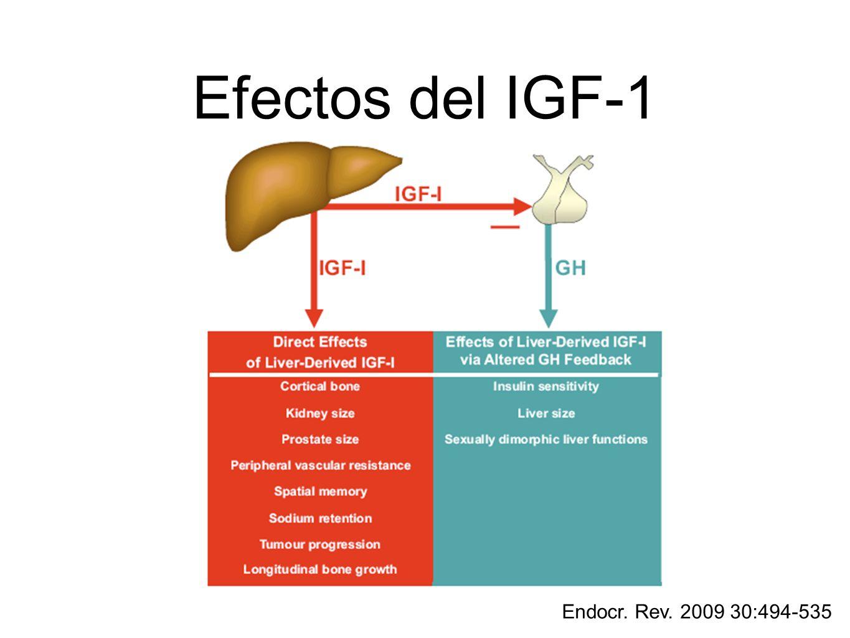 Efectos del IGF-1 Endocr. Rev. 2009 30:494-535