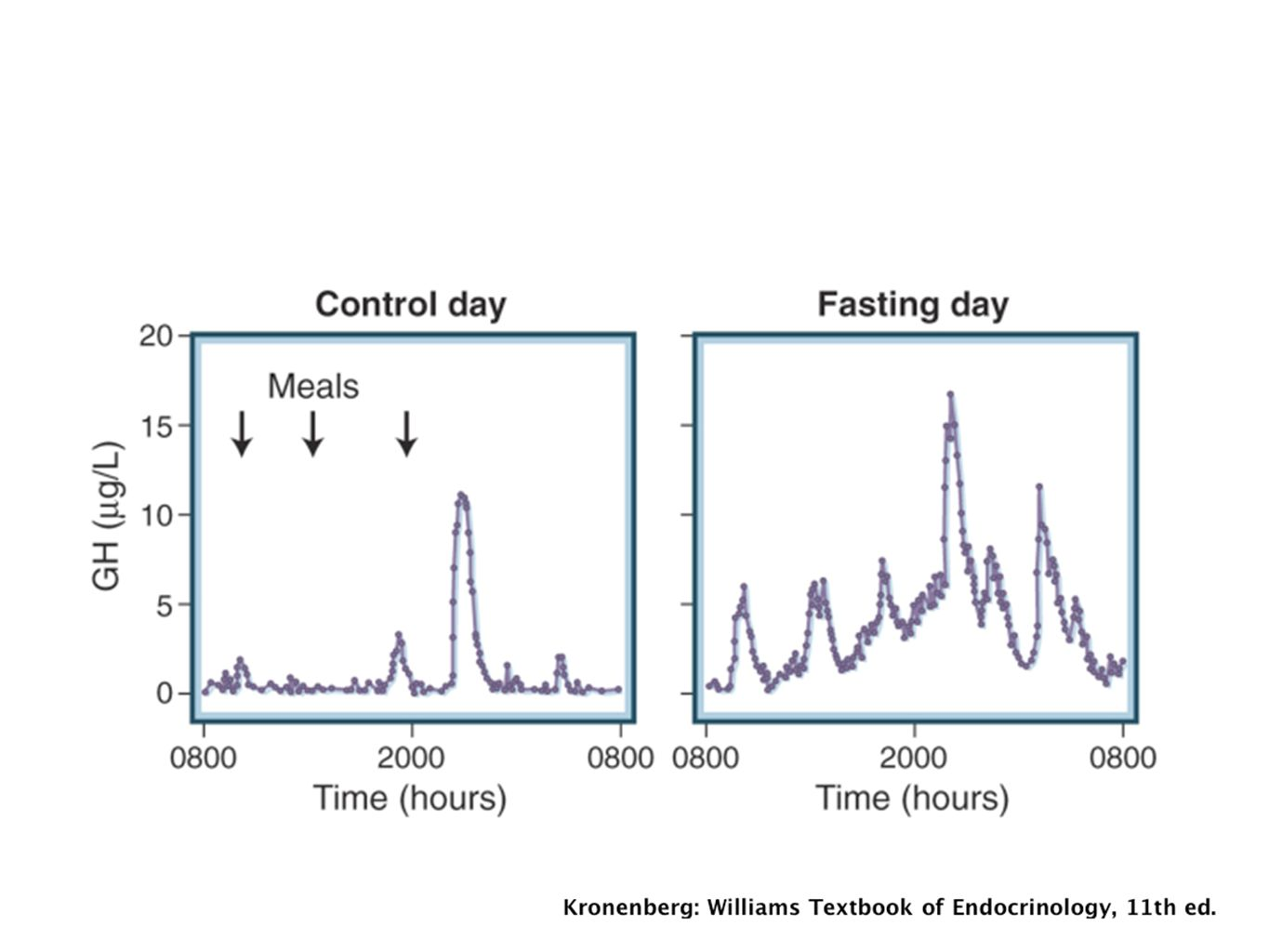 Effect of fasting on growth hormone secretion patterns in a healthy male subject.