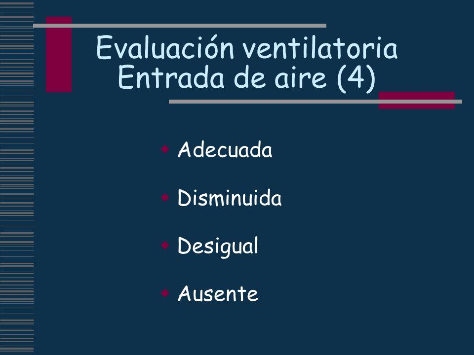 Evaluación ventilatoria Entrada de aire (4)