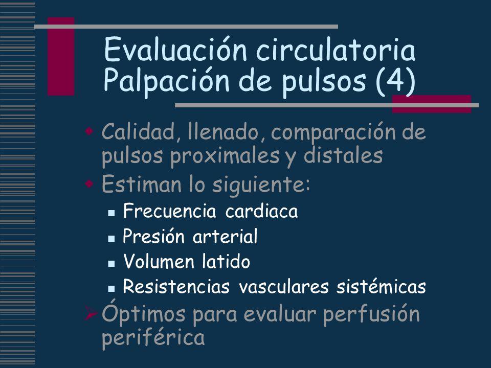 Evaluación circulatoria Palpación de pulsos (4)