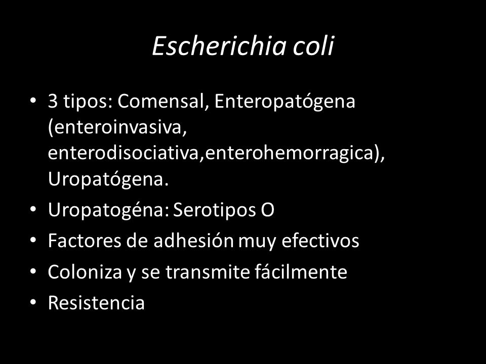 Escherichia coli 3 tipos: Comensal, Enteropatógena (enteroinvasiva, enterodisociativa,enterohemorragica), Uropatógena.