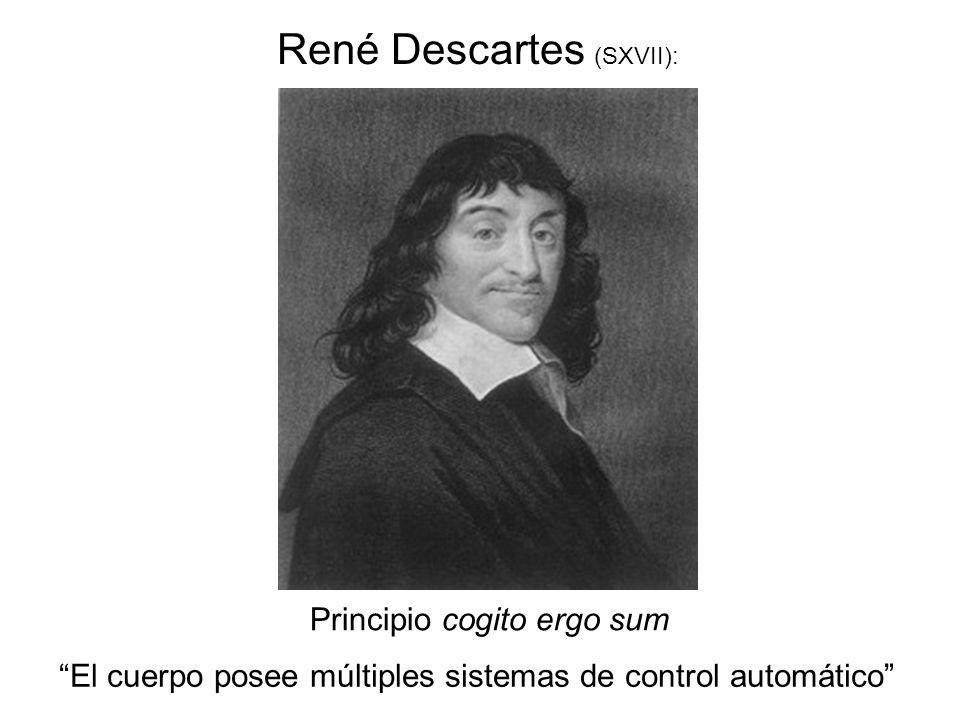 René Descartes (SXVII):