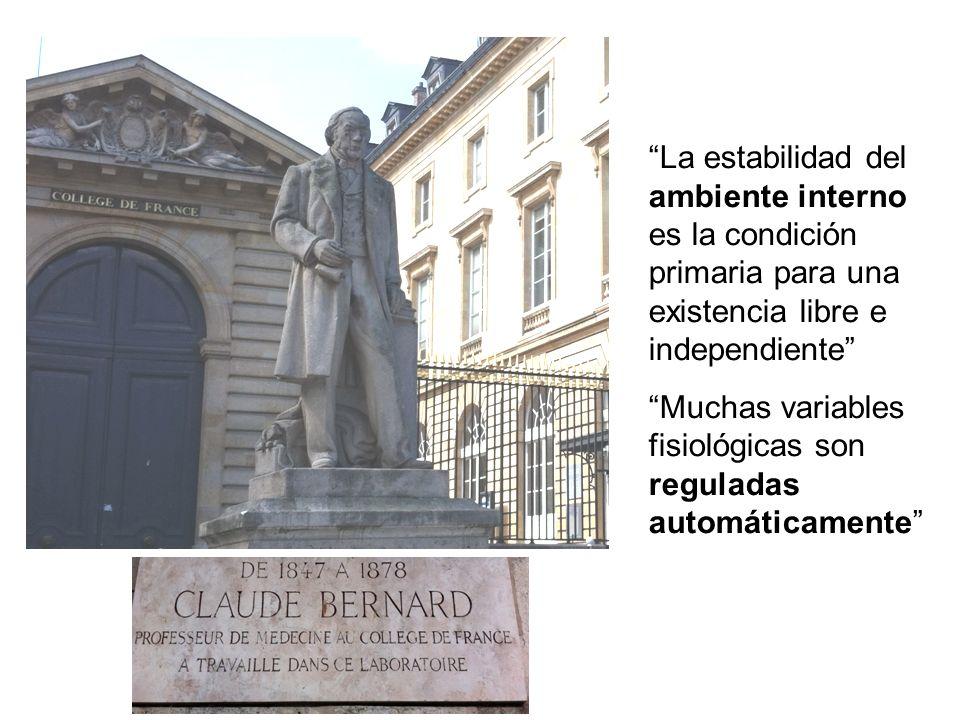 La estabilidad del ambiente interno es la condición primaria para una existencia libre e independiente