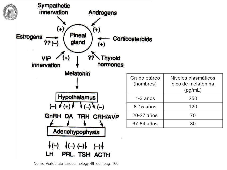 Grupo etáreo (hombres) Niveles plasmáticos pico de melatonina (pg/mL)
