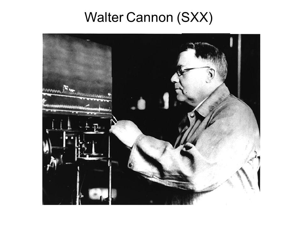 Walter Cannon (SXX)