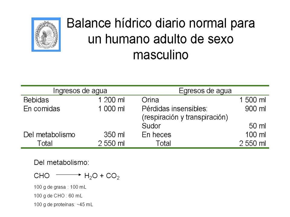Del metabolismo:CHO H2O + CO2.100 g de grasa : 100 mL.