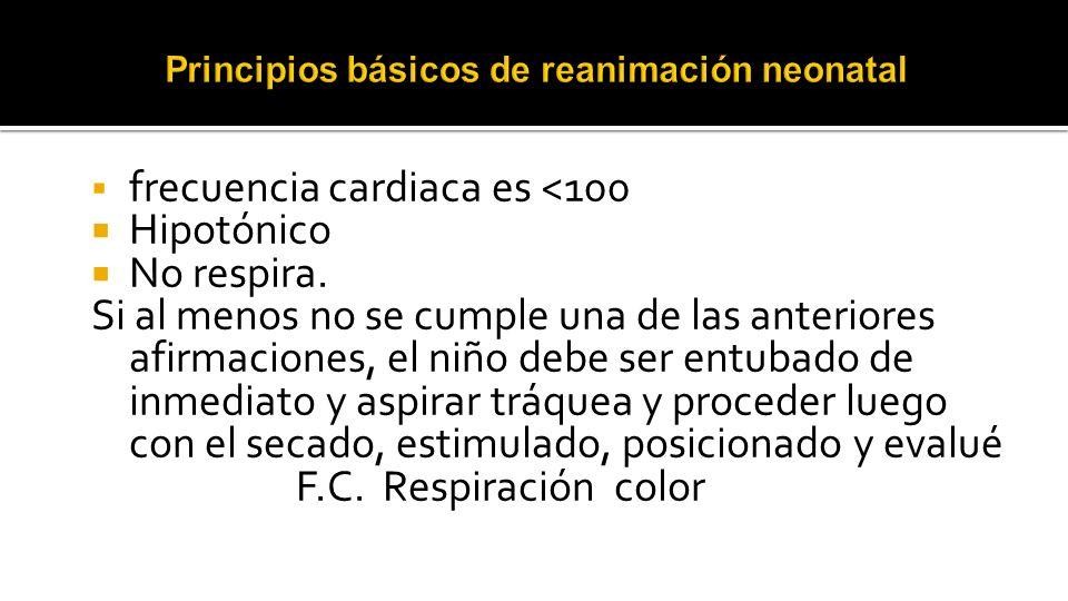 Principios básicos de reanimación neonatal
