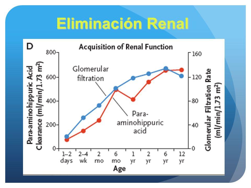 Eliminación Renal La nefrogenesis empieza a las 9 SG y se completa a las 34 S, seguido por cambio postnatales en el el flujo intra y extrarenal.