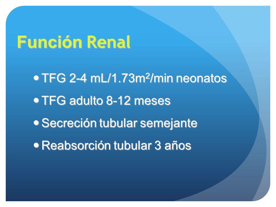 Función Renal TFG 2-4 mL/1.73m2/min neonatos TFG adulto 8-12 meses