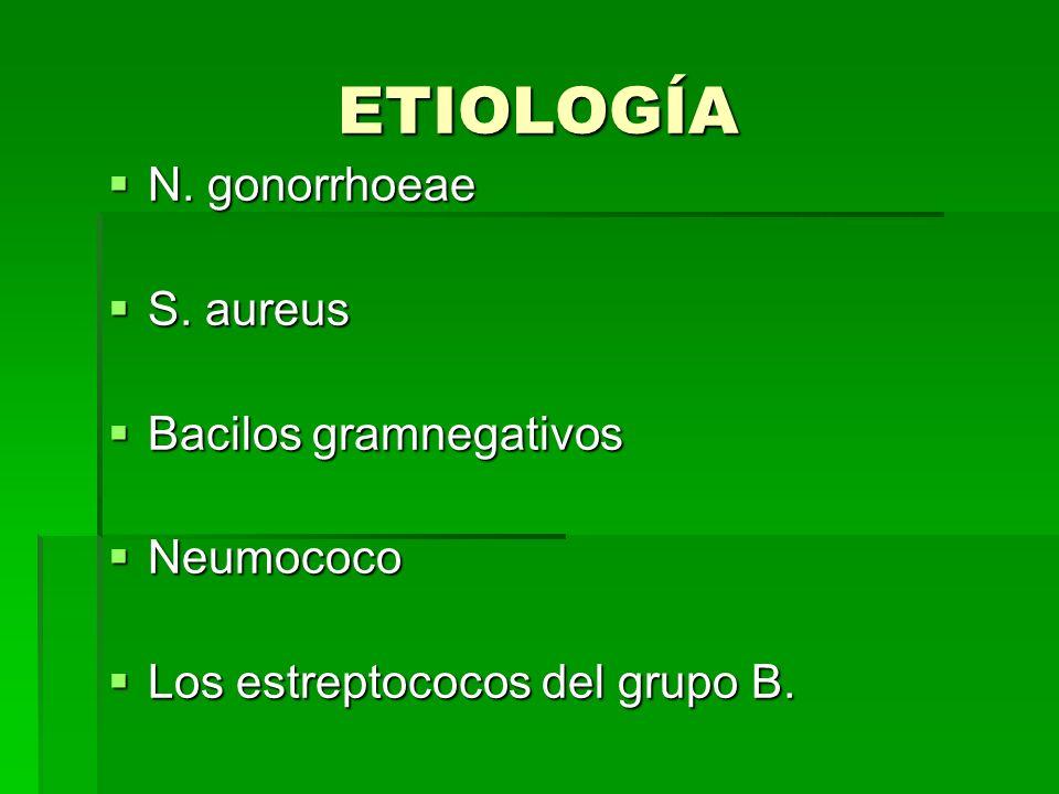 ETIOLOGÍA N. gonorrhoeae S. aureus Bacilos gramnegativos Neumococo