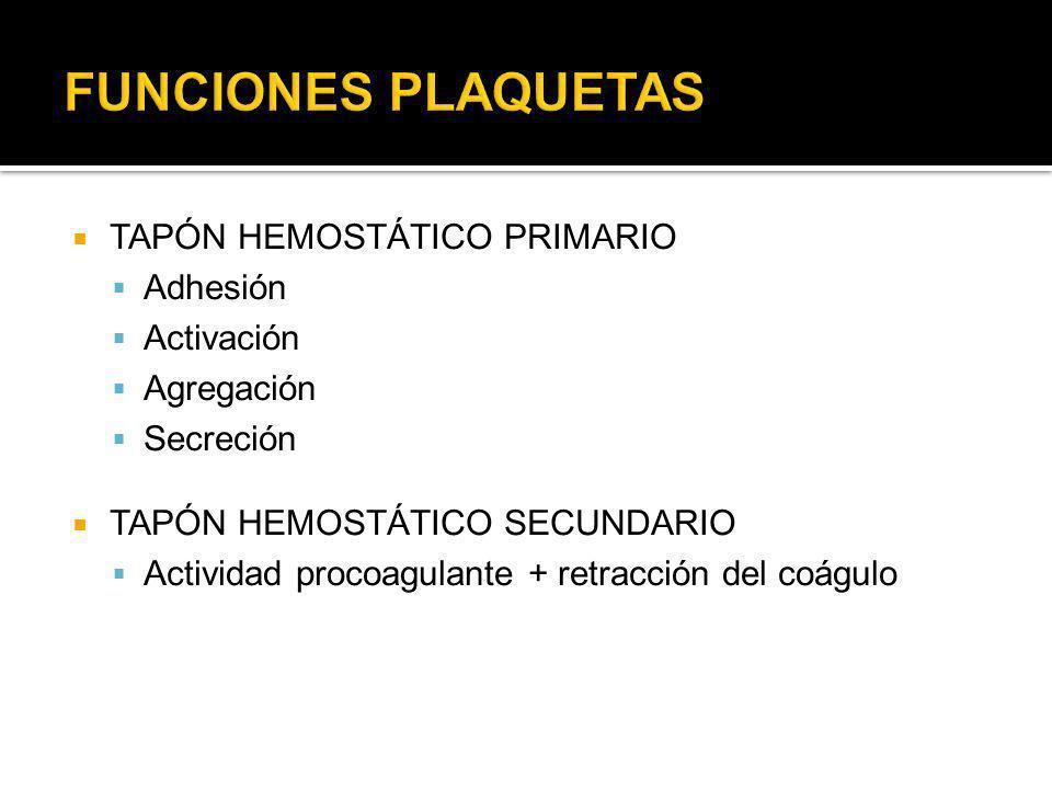 FUNCIONES PLAQUETAS TAPÓN HEMOSTÁTICO PRIMARIO Adhesión Activación