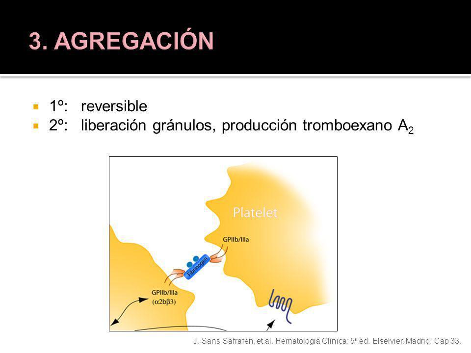 3. AGREGACIÓN 1º: reversible