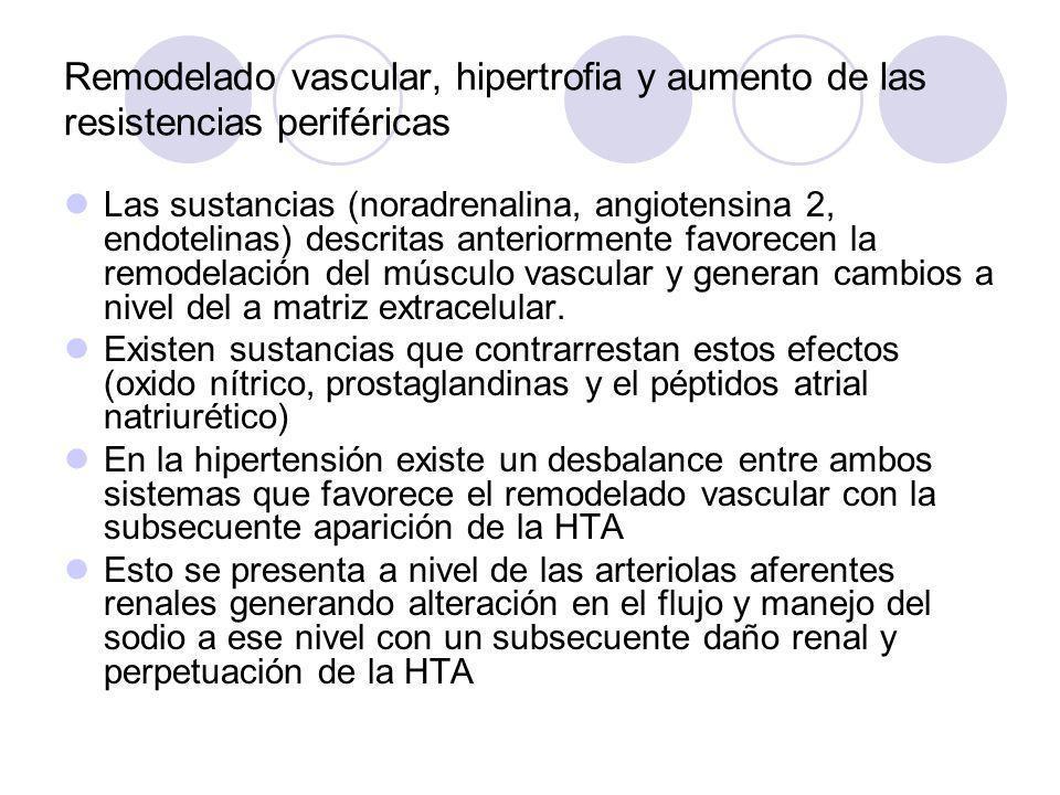 Remodelado vascular, hipertrofia y aumento de las resistencias periféricas