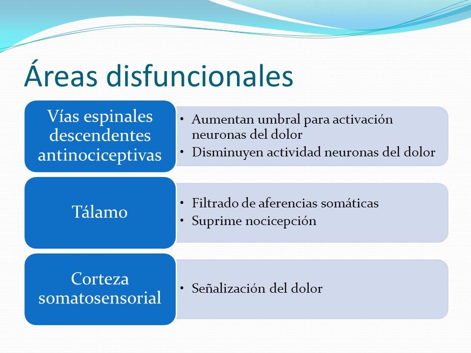 Áreas disfuncionales Vías espinales descendentes antinociceptivas