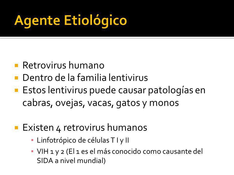 Agente Etiológico Retrovirus humano Dentro de la familia lentivirus