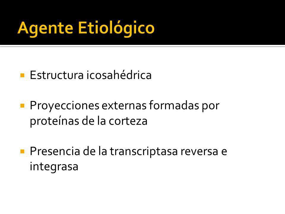 Agente Etiológico Estructura icosahédrica