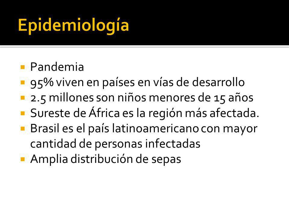 Epidemiología Pandemia 95% viven en países en vías de desarrollo
