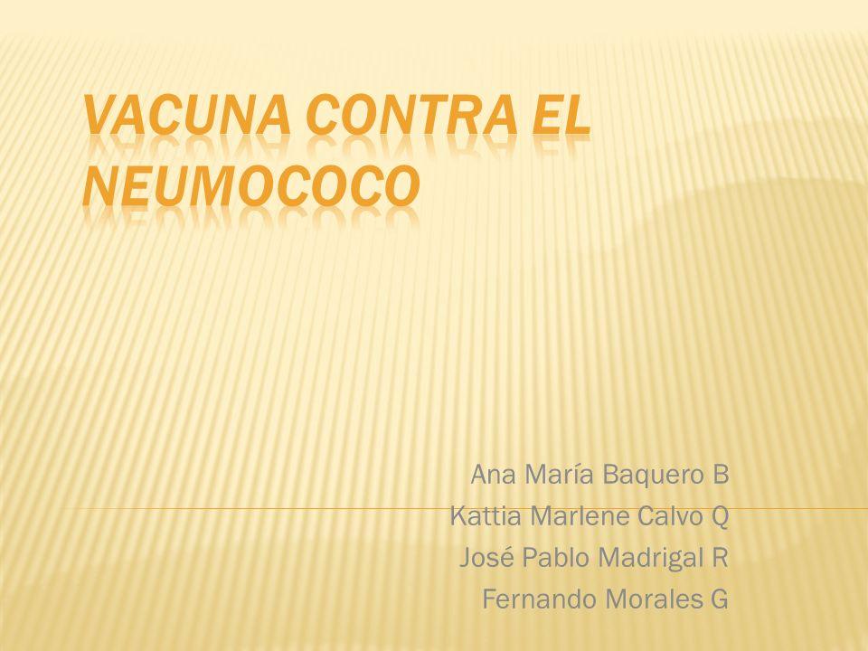 Vacuna contra el neumococo