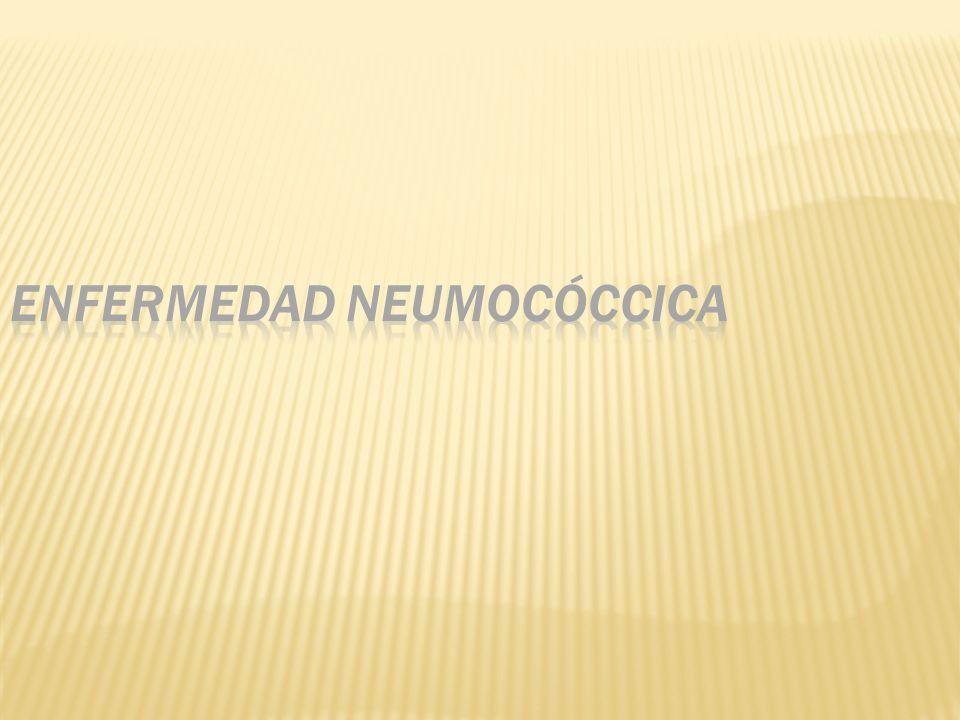 Enfermedad neumocóccica