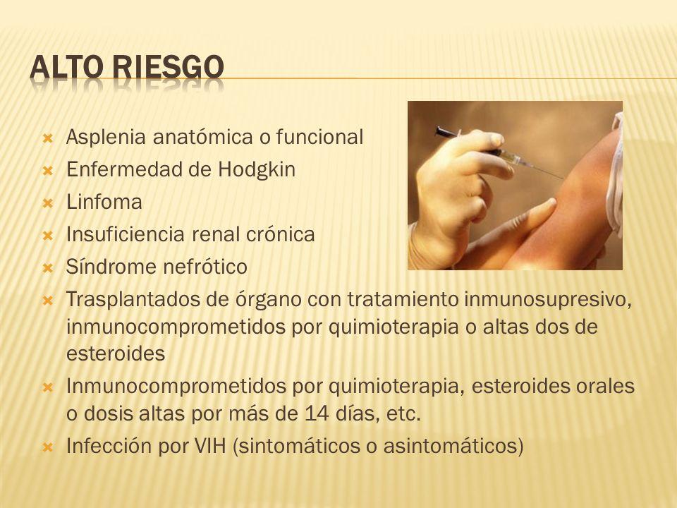 Alto Riesgo Asplenia anatómica o funcional Enfermedad de Hodgkin