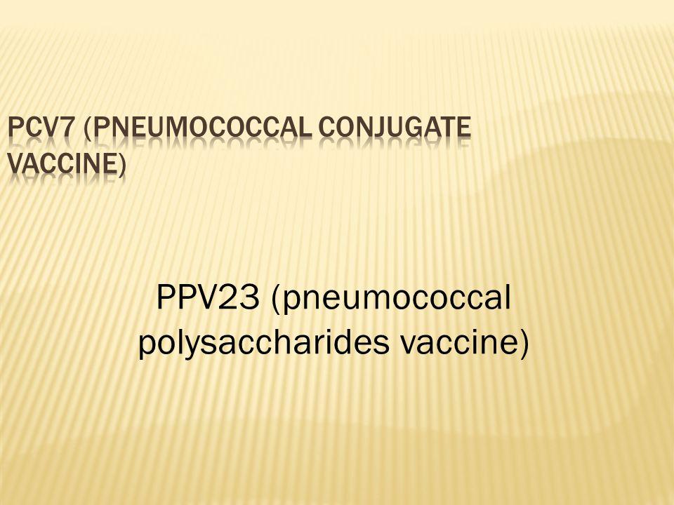 PCV7 (pneumococcal conjugate vaccine)