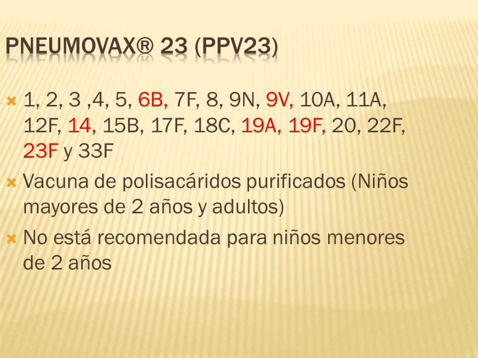 PNEUMOVAX® 23 (PPV23) 1, 2, 3 ,4, 5, 6B, 7F, 8, 9N, 9V, 10A, 11A, 12F, 14, 15B, 17F, 18C, 19A, 19F, 20, 22F, 23F y 33F.
