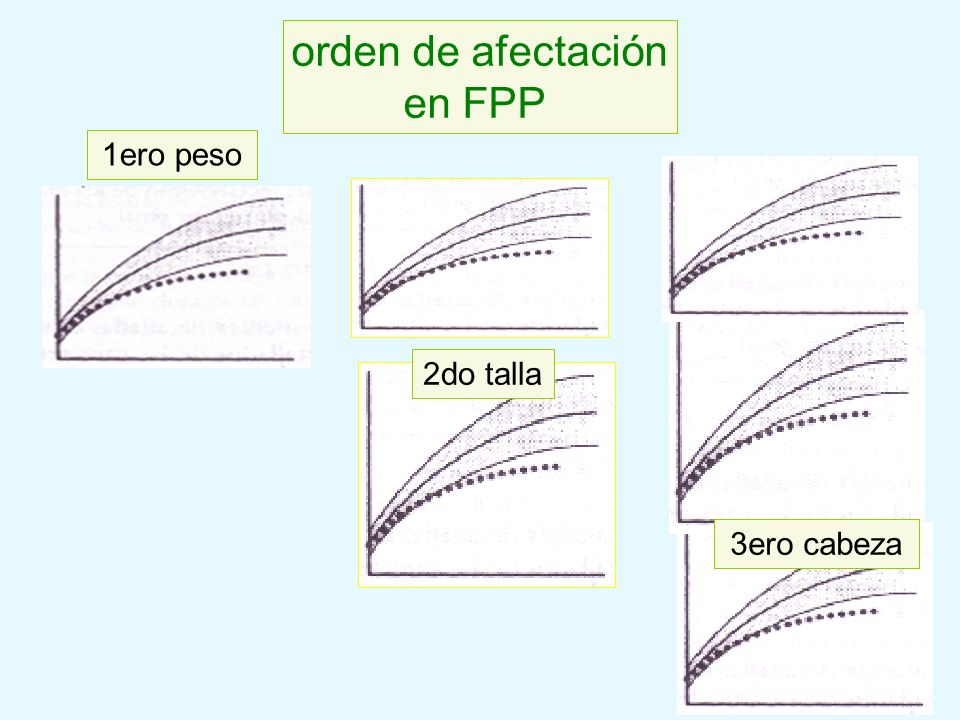 orden de afectación en FPP 1ero peso 2do talla 3ero cabeza