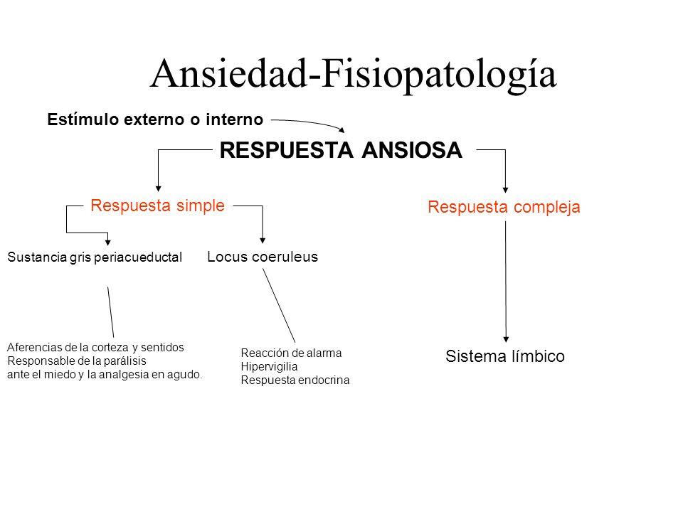 Ansiedad-Fisiopatología