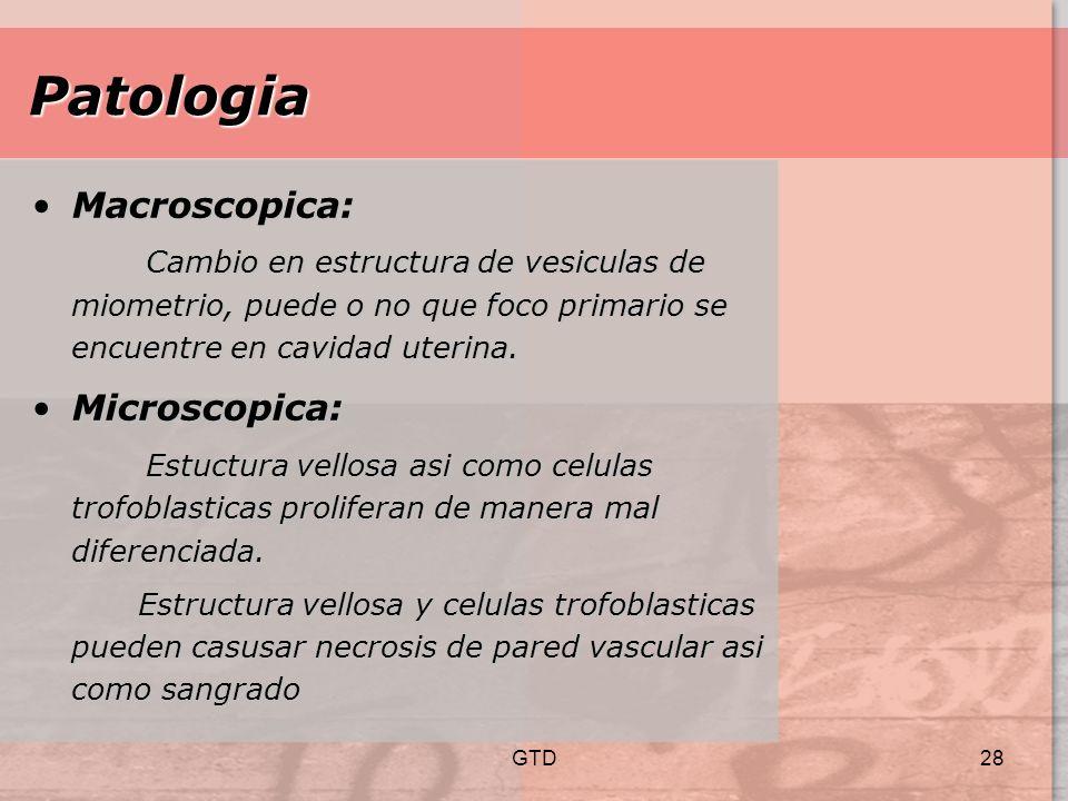 Patologia Macroscopica: Microscopica: