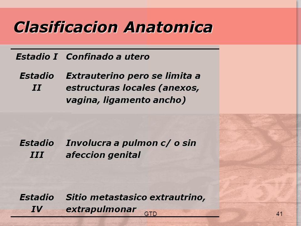 Clasificacion Anatomica