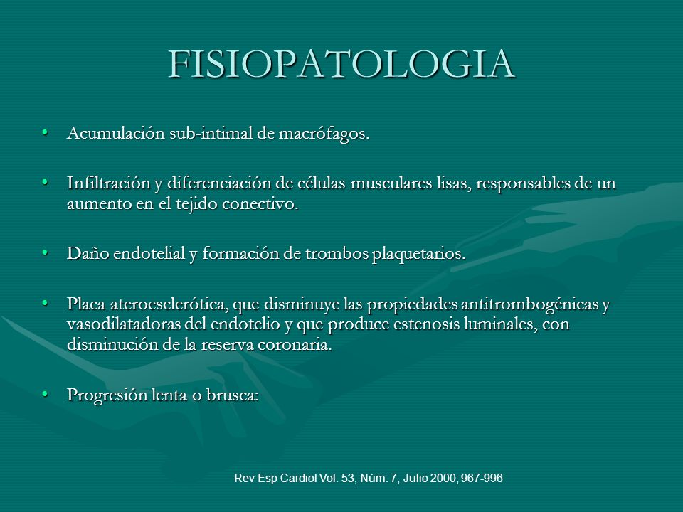 FISIOPATOLOGIA Acumulación sub-intimal de macrófagos.