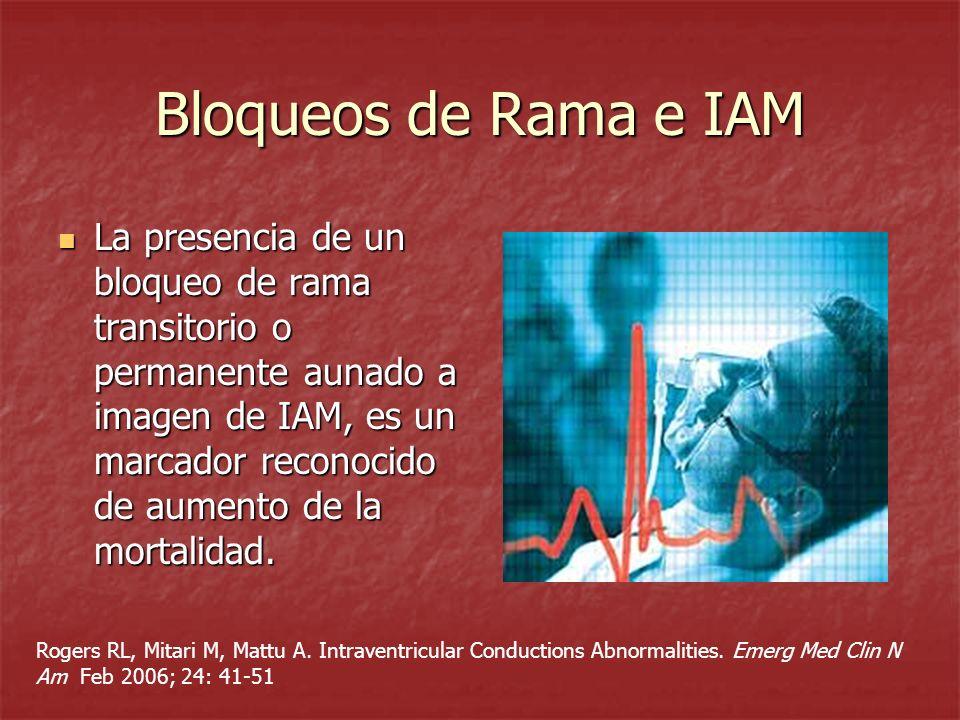 Bloqueos de Rama e IAM
