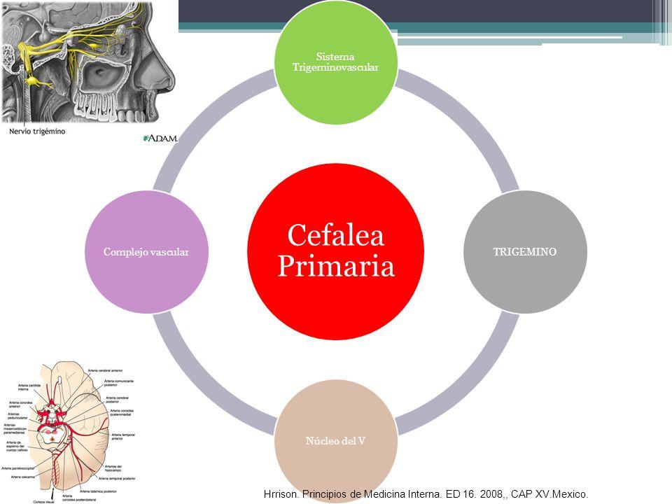 Sistema Trigeminovascular