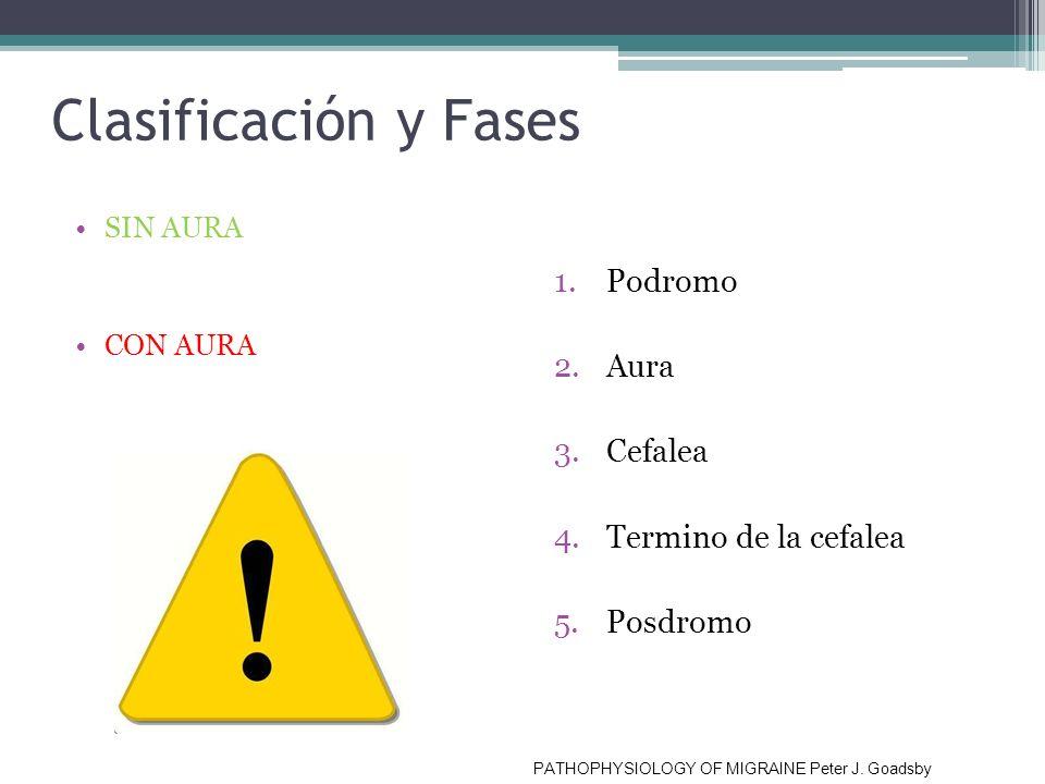 Clasificación y Fases Podromo Aura Cefalea Termino de la cefalea