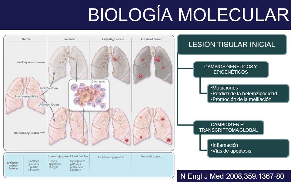 BIOLOGÍA MOLECULAR LESIÓN TISULAR INICIAL