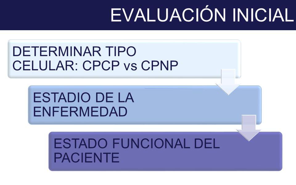 EVALUACIÓN INICIAL DETERMINAR TIPO CELULAR: CPCP vs CPNP