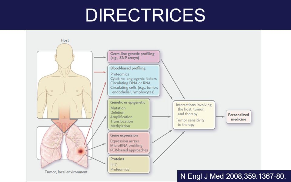 DIRECTRICES N Engl J Med 2008;359:1367-80.