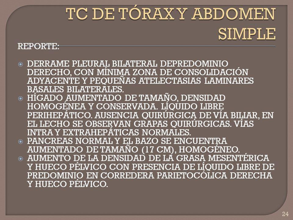 TC DE TÓRAX Y ABDOMEN SIMPLE