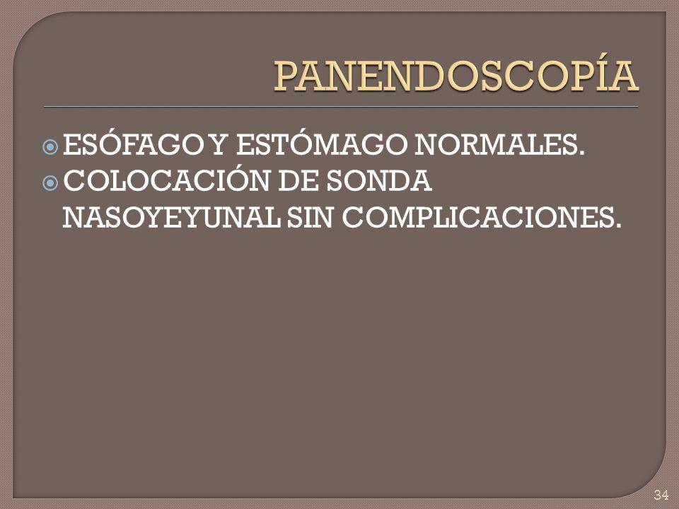 PANENDOSCOPÍA ESÓFAGO Y ESTÓMAGO NORMALES.