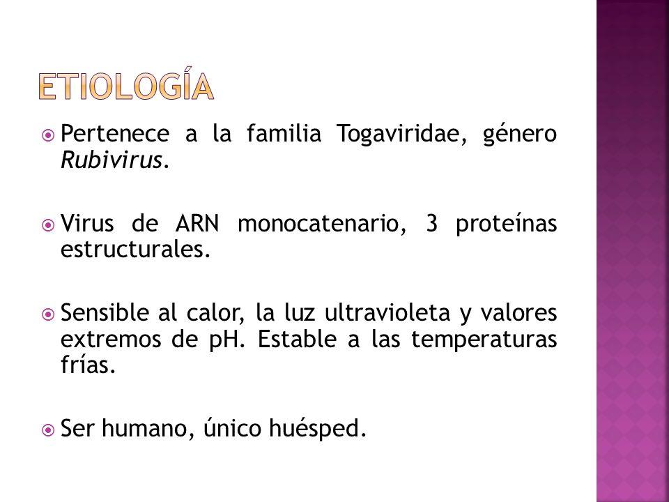 etiología Pertenece a la familia Togaviridae, género Rubivirus.