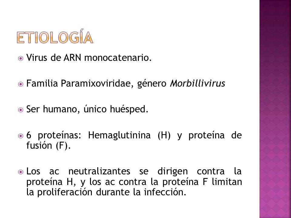 Etiología Virus de ARN monocatenario.