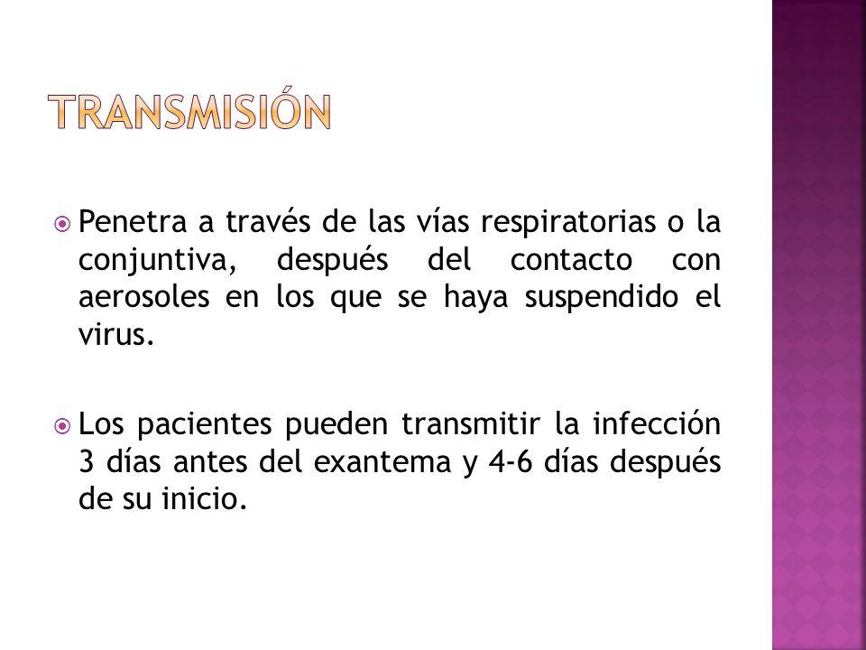 TRANSMISIÓN Penetra a través de las vías respiratorias o la conjuntiva, después del contacto con aerosoles en los que se haya suspendido el virus.