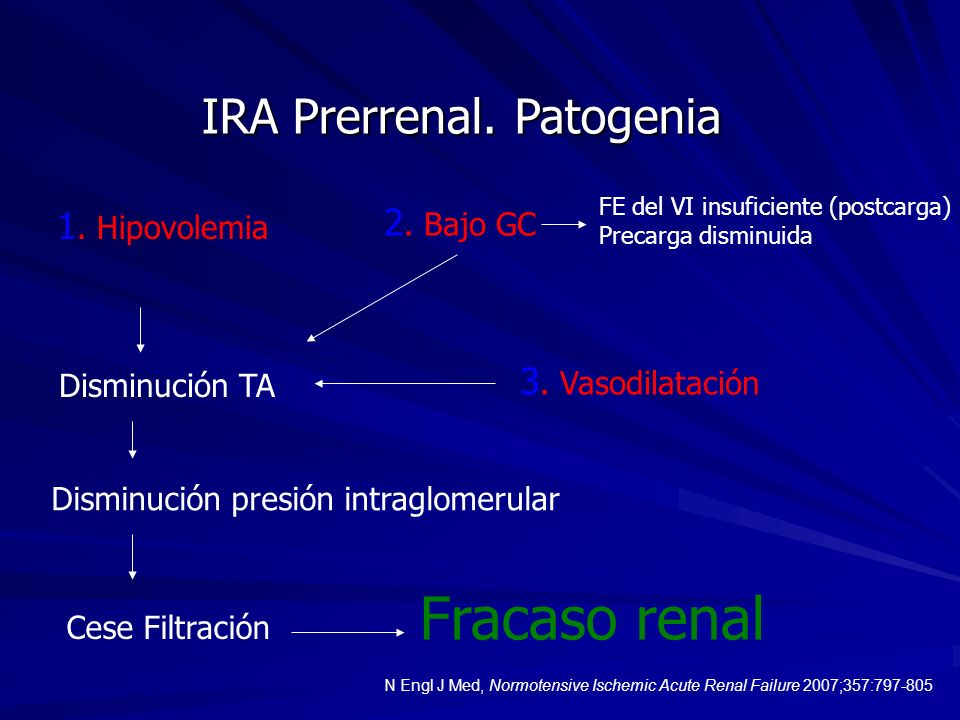 IRA Prerrenal. Patogenia