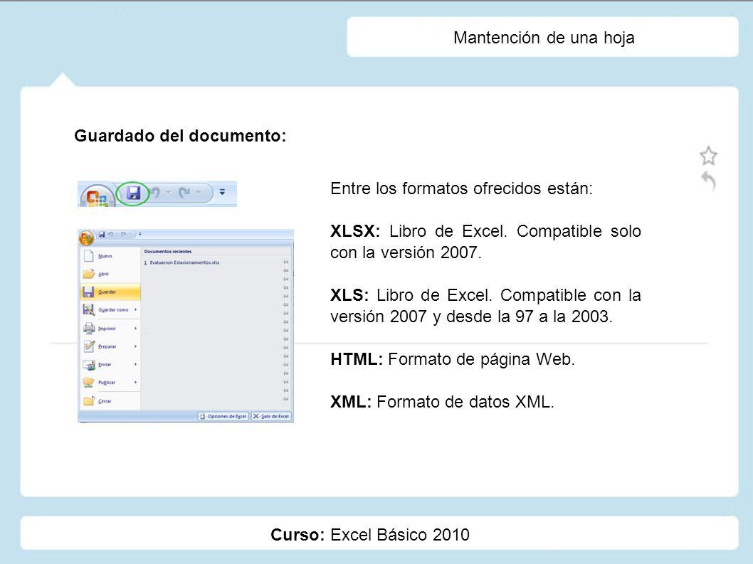 Mantención de una hoja Guardado del documento: Entre los formatos ofrecidos están: XLSX: Libro de Excel. Compatible solo con la versión 2007.