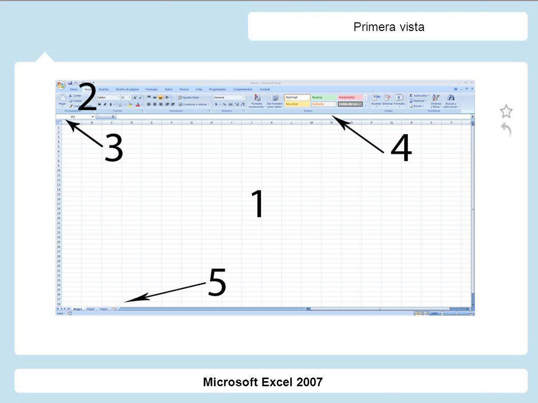 Primera vista Microsoft Excel 2007